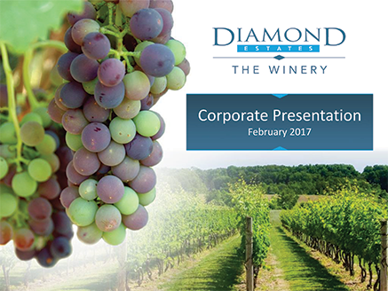 Diamond Estates Investor Presentation February 2017
