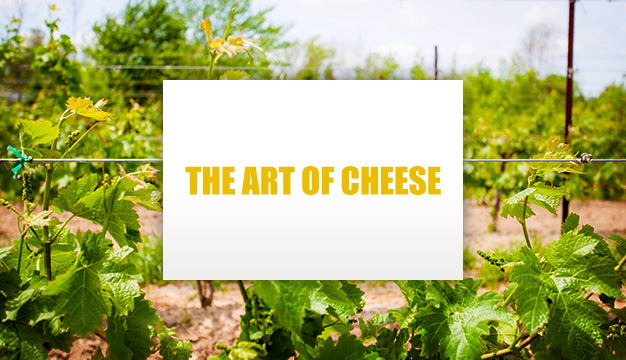 Discount | The Art of Cheese